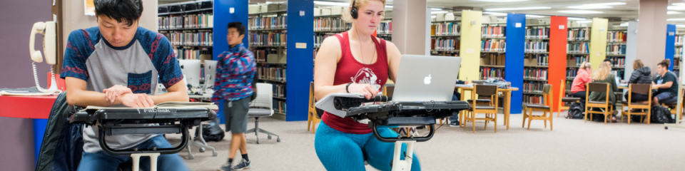 Image of students studing in the HSU library on laptops